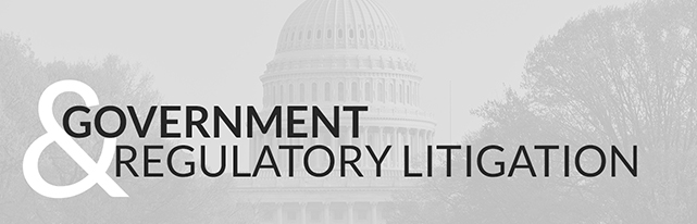 Government & Regulatory Litigation