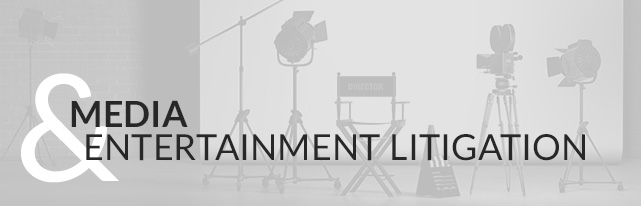 Media and Entertainment Litigation